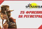 Бонус за регистрацию в Spinamba казино